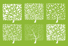 δέντρο σχεδίου συλλογή& Στοκ φωτογραφία με δικαίωμα ελεύθερης χρήσης