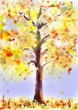 δέντρο φθινοπώρου Στοκ Εικόνες
