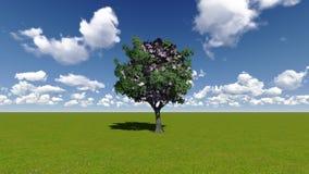 Δέντρο χρημάτων με τα ευρο- τραπεζογραμμάτια Στοκ Εικόνες