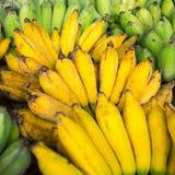 Δέσμες των ώριμων μπανανών Στοκ εικόνα με δικαίωμα ελεύθερης χρήσης