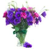 Δέσμη των μωβ λουλουδιών eustoma Στοκ Εικόνες