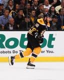 Δαβίδ Krejci, Boston Bruins Στοκ φωτογραφία με δικαίωμα ελεύθερης χρήσης
