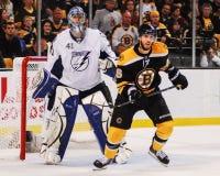 Δαβίδ Krejci, Boston Bruins Στοκ εικόνες με δικαίωμα ελεύθερης χρήσης