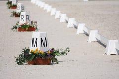 δαχτυλίδια αλόγων εκπαίδευσης αλόγου σε περιστροφές Στοκ Εικόνα