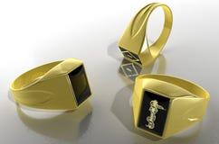 δαχτυλίδι signet Στοκ εικόνα με δικαίωμα ελεύθερης χρήσης