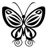 δερματοστιξία πεταλούδων Στοκ φωτογραφίες με δικαίωμα ελεύθερης χρήσης