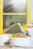Δημητριακά προγευμάτων Στοκ φωτογραφίες με δικαίωμα ελεύθερης χρήσης