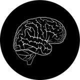 διάνυσμα εικονιδίων εγκεφάλου Στοκ Εικόνες