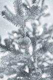 Διακοσμήσεις χριστουγεννιάτικων δέντρων Στοκ εικόνες με δικαίωμα ελεύθερης χρήσης