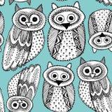 Διακοσμητικό μαύρο μπλε άνευ ραφής σχέδιο Doodle σκίτσων κουκουβαγιών χεριών dravn χαριτωμένο Στοκ Εικόνες
