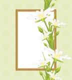 Διακοσμητικό πλαίσιο με τα άσπρα λουλούδια άνοιξη χαιρετισμός καλή χρονιά καρτών του 2007 Στοκ φωτογραφίες με δικαίωμα ελεύθερης χρήσης