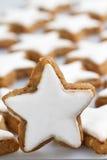 Διακόσμηση μπισκότων Στοκ Φωτογραφία