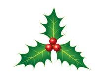 Διακόσμηση Χριστουγέννων της Holly Στοκ Φωτογραφίες