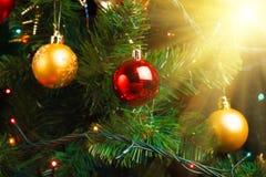 Διακόσμηση χριστουγεννιάτικων δέντρων με το λαμπρό έντονο φως Στοκ φωτογραφίες με δικαίωμα ελεύθερης χρήσης