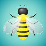 Διανυσματική απεικόνιση μελισσών Στοκ Εικόνες