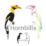 Διανυσματική εικόνα ενός hornbill Στοκ Εικόνες