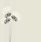 Εκλεκτής ποιότητας floral υπόβαθρο Στοκ Φωτογραφία