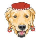 Διανυσματικό αστείο Retriever του Λαμπραντόρ σκυλιών κινούμενων σχεδίων hipster Στοκ Φωτογραφία