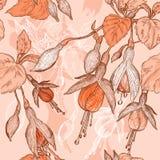 Διανυσματικό σκίτσο των φούξια λουλουδιών Στοκ Εικόνες