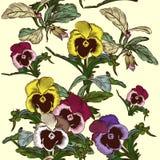 Διανυσματικό σχέδιο λουλουδιών με τα λουλούδια βιολέτων Στοκ Εικόνα