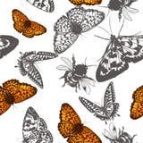 Διανυσματικό σχέδιο πεταλούδων για το σχέδιο Στοκ φωτογραφία με δικαίωμα ελεύθερης χρήσης