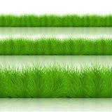 Διανυσματικό σύγχρονο πράσινο σύνολο χλόης Στοκ Εικόνες