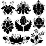 Διανυσματικό σύνολο λουλουδιών Διάτρητα που απομονώνονται Στοκ Εικόνα