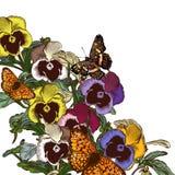 Διανυσματικό υπόβαθρο λουλουδιών με τα λουλούδια βιολέτων Στοκ Εικόνα
