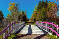 Δια το ίχνος του Καναδά Στοκ εικόνα με δικαίωμα ελεύθερης χρήσης