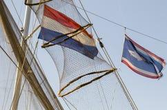 Δοχείο ψαριών στον ιστό Στοκ φωτογραφίες με δικαίωμα ελεύθερης χρήσης