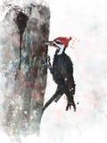 Δρυοκολάπτης Watercolor Pileated Στοκ Εικόνες