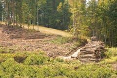 Δρόμος στην κλίση του βουνού. Καύκασος Στοκ φωτογραφία με δικαίωμα ελεύθερης χρήσης