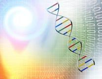 Δυαδικά σήραγγα και DNA Στοκ φωτογραφία με δικαίωμα ελεύθερης χρήσης
