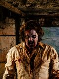 Δυσάρεστο zombie Στοκ Εικόνα