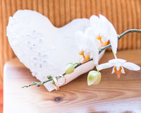 Δύο γαμήλια δαχτυλίδια Στοκ εικόνα με δικαίωμα ελεύθερης χρήσης
