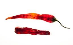Δύο ξηρά πιπέρια Στοκ Εικόνες