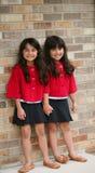 двойник кукол Стоковое Изображение RF