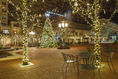 Двор украсил дерево Вирджинию праздника Стоковые Фото