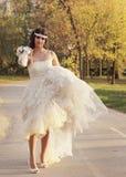 Девушка в платье свадьбы Стоковое Фото