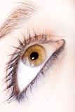 девушка глаза Стоковая Фотография