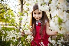 Девушка около цветков яблони Стоковые Изображения