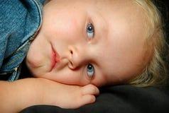 девушка смотря унылых детенышей Стоковая Фотография RF