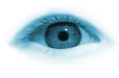 девушка s глаза Стоковые Фото