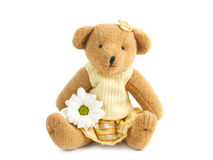 девушка teddybear Стоковое Изображение RF