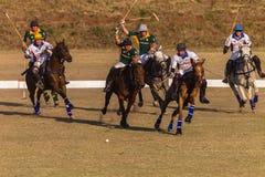Действие игры лошадей всадников поло Стоковая Фотография RF