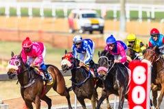 Действие лошадиных скачек Стоковая Фотография RF
