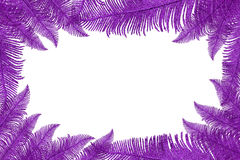 декоративные листья рамки сделали Стоковое Изображение