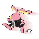 дело голодает кролик Стоковые Изображения RF