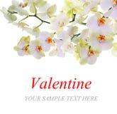 День Святого Валентина Стоковое фото RF