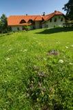 деревенский дом Стоковая Фотография RF